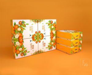 融安金桔包装设计